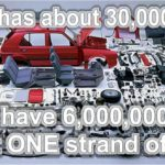 A car has about 30,000 parts. You have over 6,000,000 parts in just ONE strand of DNA!