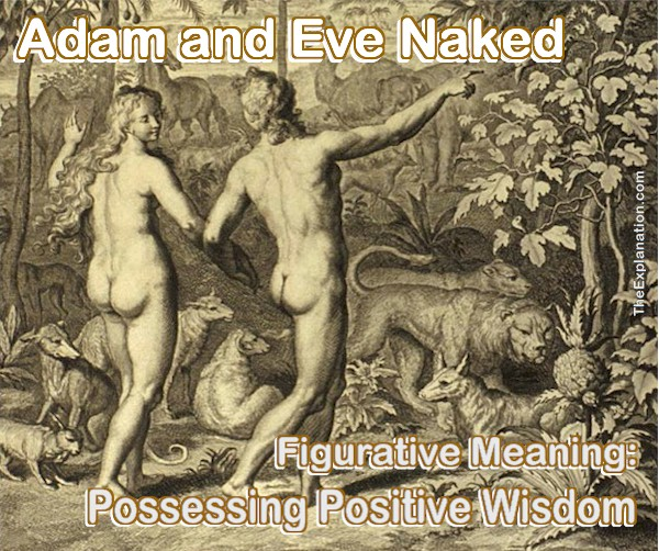 Adam and Eve naked from 1728 Figures de la Bible . At this juncture in the Genesis story both of them had POSITIVE wisdom