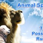 Animal Spirit. Animals possess ruach. They have spirit but this does not make them spiritual.