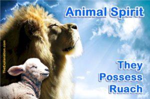 Animal Spirit. Animals possess ruach. They have spirit but this does not make them spiritual.
