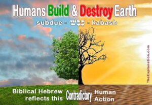 Biblical Hebrew for subdue, kabash, reflects human contradictory action toward Earth.