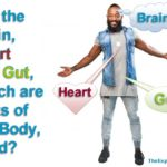 Great controversy: Are the brain, heart and gut, which are physical parts of the body, mind? Is it in these organs that the cognitive thinking process takes place?