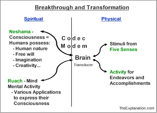 The human brain. It's the thoroughfare where spiritual and physical data undergo transformation. It's a transducer.