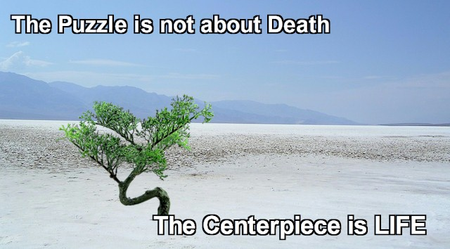 The puzzle is not about Death. The centerpiece and framework is all about Life.