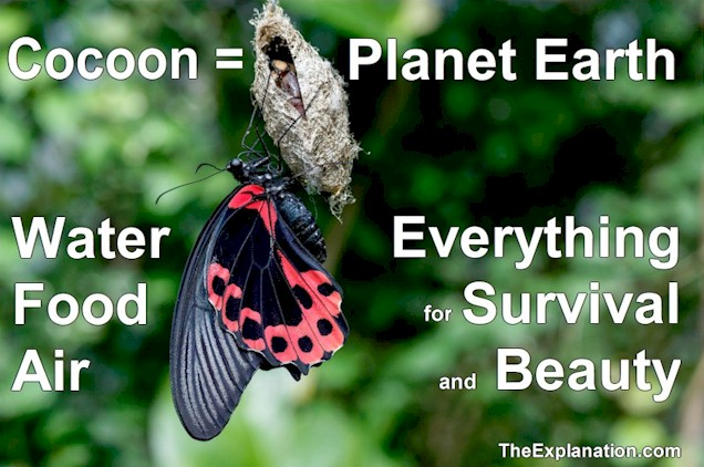 Planet water, planet earth, the cocoon with everything for survival and beauty.