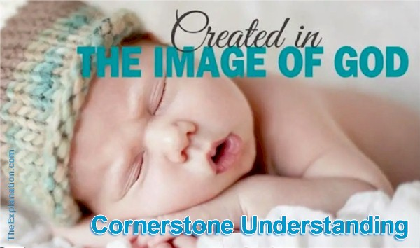 Humans are created in the image of God. From a Bible point of view this is cornerstone understanding to grasp the rest of the Bible story.