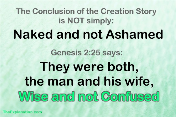The conclusion of the Creation story is not only that they were naked and not ashamed. They were WISE and NOT CONFUSED