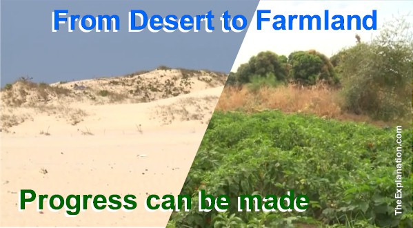 Fertile Farmland of Paramount Importance, Especially in Third World Countries