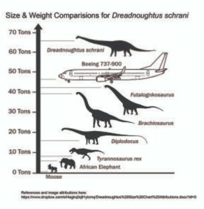 This dinosaur-animal chart shows sizes and weights. Even an elephant pales into insignificance. What about you and me?