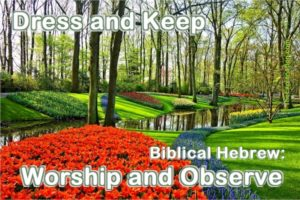 Dress and keep the Garden of Eden. In Biblical Hebrew, the verbs are worship and observe. That's what God told Adam.