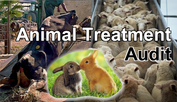 Animal Treatment merits an Audit