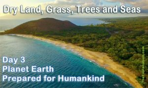 Dry land, grass, trees, seas. Day 3 of Creation and our Planet Earth is looking more and more like home for humankind.