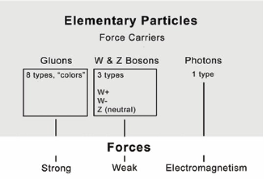 The Strong force, Weak force and Electromagnetic force are the three forces that ensure the stability of all physical substances.