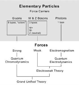 The elementary particles + the strong, weak and electromagnetic forces give rise to the Grand Unified Theory.
