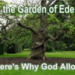 Evil in the Garden of Eden. Here's why God desired and allowed what appears to be a paradox. Evil in Paradise.