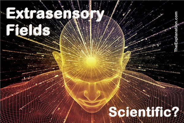 Extrasensory Fields in Spiritual Science. A Brief History