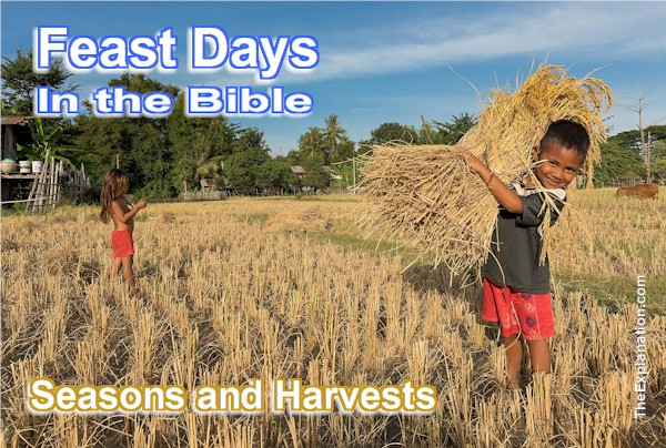 Biblical Feast Days. Amazing Meaning for You in 21st Century