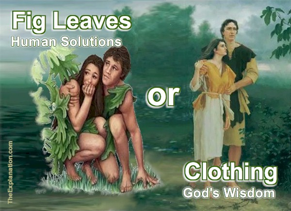 Fig Leaves or Clothing? Tinker or Build? Practical Bible Wisdom