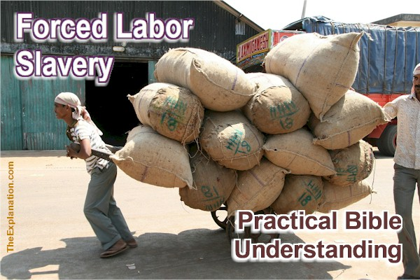 Slavery, Labor, Working conditions. Practical Bible Wisdom