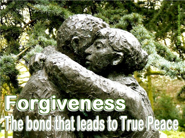 Forgiveness is the 7th step of how humans function. It's the bond that releases humans from animosity and leads to true peace