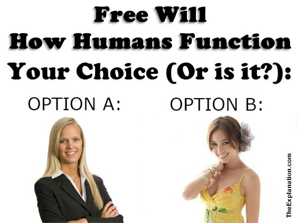 Free will, the choice is yours. Yes, but certainly not in all cases. This affects how humans function.
