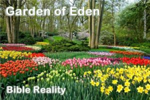 The Garden of Eden. In the bible this exquisite home is reality. It is described throughout the Bible in many ways.