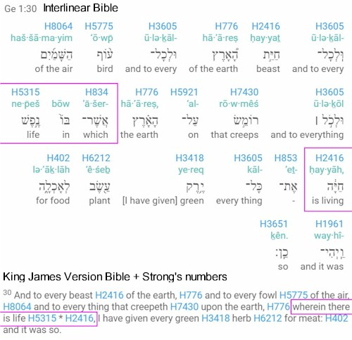 Nefesh chaya in Interlinear and KJV Bible. Reveals translation short-coming.