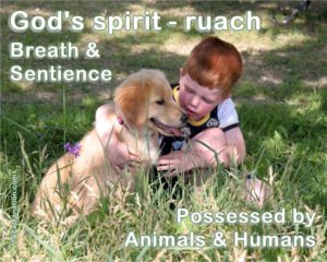 God's spirit - ruach. Both breath and sentience are possessed by animals and humans.