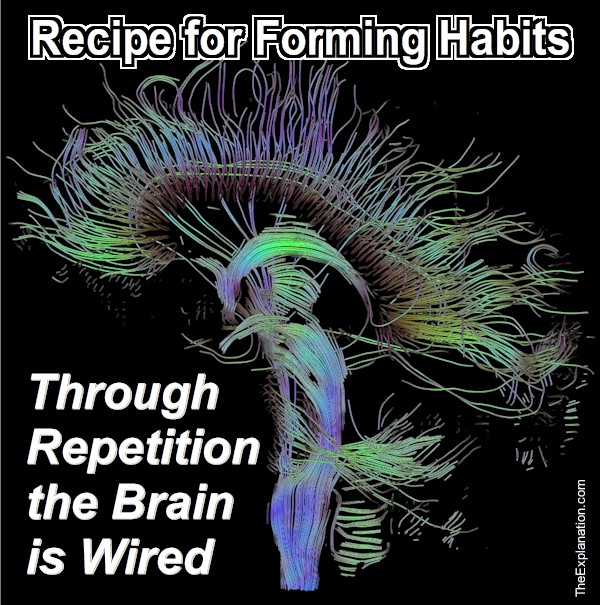 Your wired brain changes its connections constantly, but repeating the right things established good habits. The neurons that fire together, wire together.