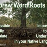 Biblical Hebrew roots are impossible to fully translate. Therefore it is impossible to fully understand the meaning in your native language.