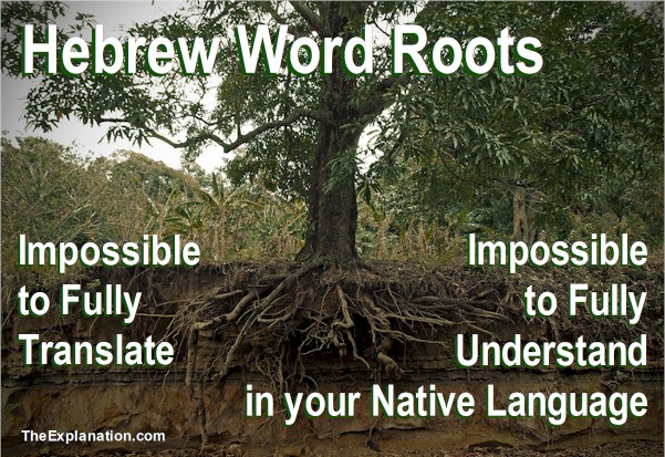 Biblical Hebrew Roots to Anchor your Bible Comprehension