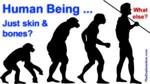 What is a human being? Just skin and bones? Or much more ... what else is added?