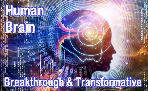 Human Brain. Its role in breakthrogh and transformation of the signals it handles.