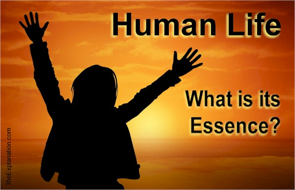 Human Life – The Highest Level of Life on Earth and Maybe in the Universe