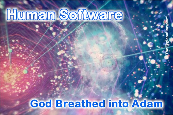 Human software, God breathed neshama into Adam's nostrils. This transformed dust into a human being.