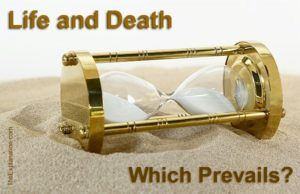 Life and death. Life or death. Which one prevails in the end? Life.