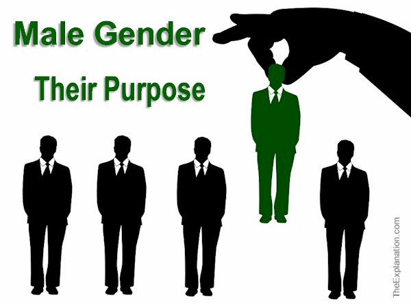 Male Gender – Its Significance and Why God Created it