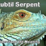 The meaning of subtil serpent is essential for understanding its role in the Plan of God.