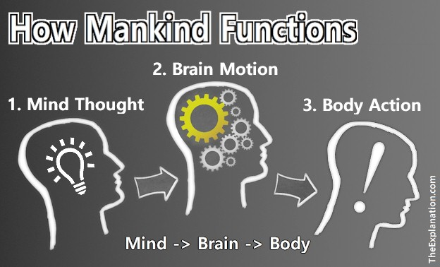 Thoughts, Musing & Cogitation Transform Physical Agility