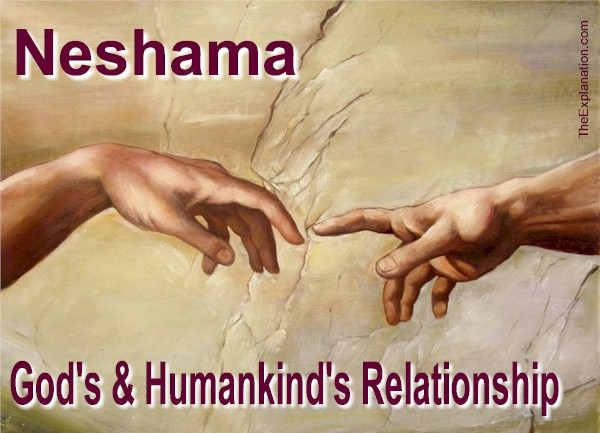 Neshama Reveals Humankind's Relationship with God