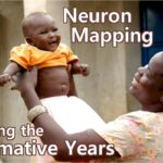 "It's as if each person can have a hand in ""drawing"" the mapping of neurons during the formative years of a child's life, when the child's brain acquires knowledge and develops neuronal connections."