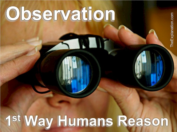 Observation, The First Way to Human Reasoning