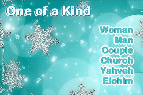 One of a Kind: Woman, Man, Couple, Church, Yahveh, Elohim. Lesson?