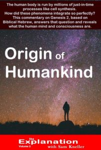 A mock-up cover of Origin of Humankind - Where did Humankind really come from?