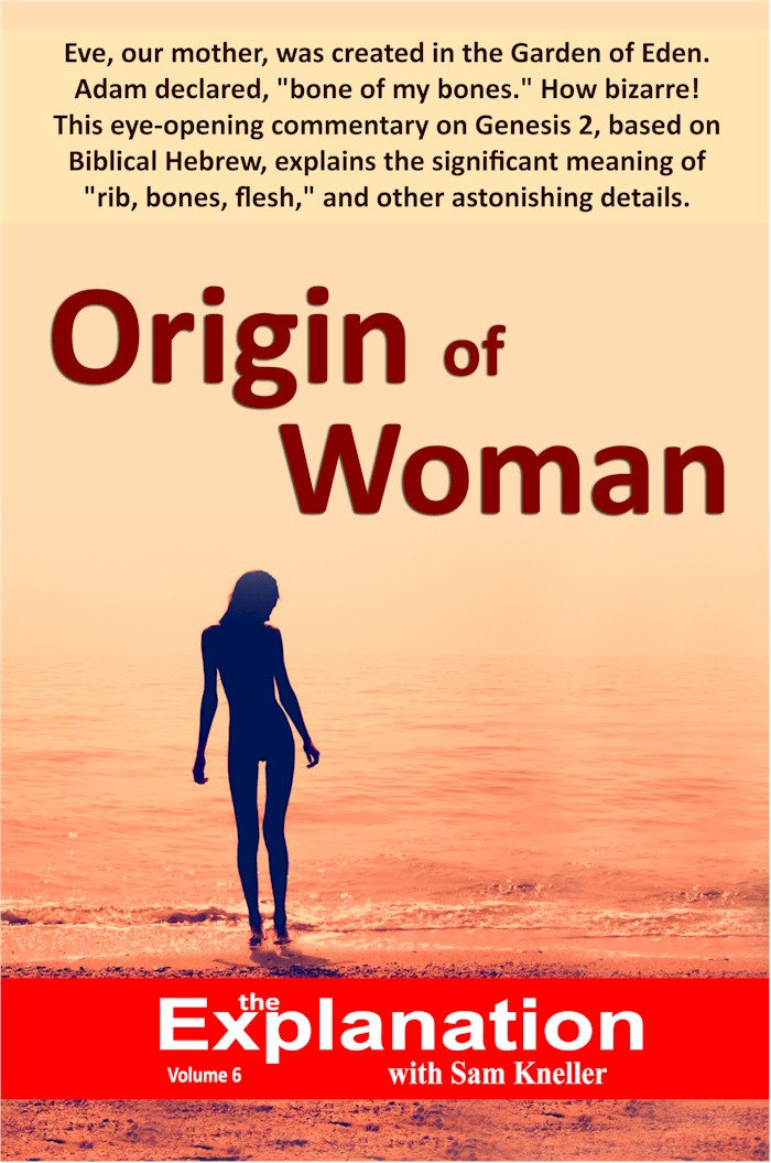 Origin of Woman- Where did Woman really come from? Mock-up book cover
