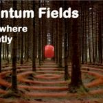 Quantum fields, the quantum wave, all directs at the same time.
