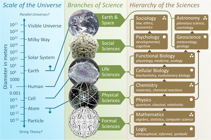 Branches of Science and related fields