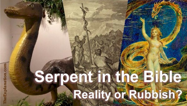 The Serpent In The Bible Is It Reality Or Some Fairytale Created