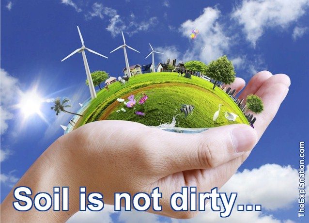 Our Earth, Soil is not just Dirty Dirt
