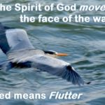 The Spirit of God moved on the face of the waters. The specific meaning of the Biblical Hebrew word 'moved' is to flutter.